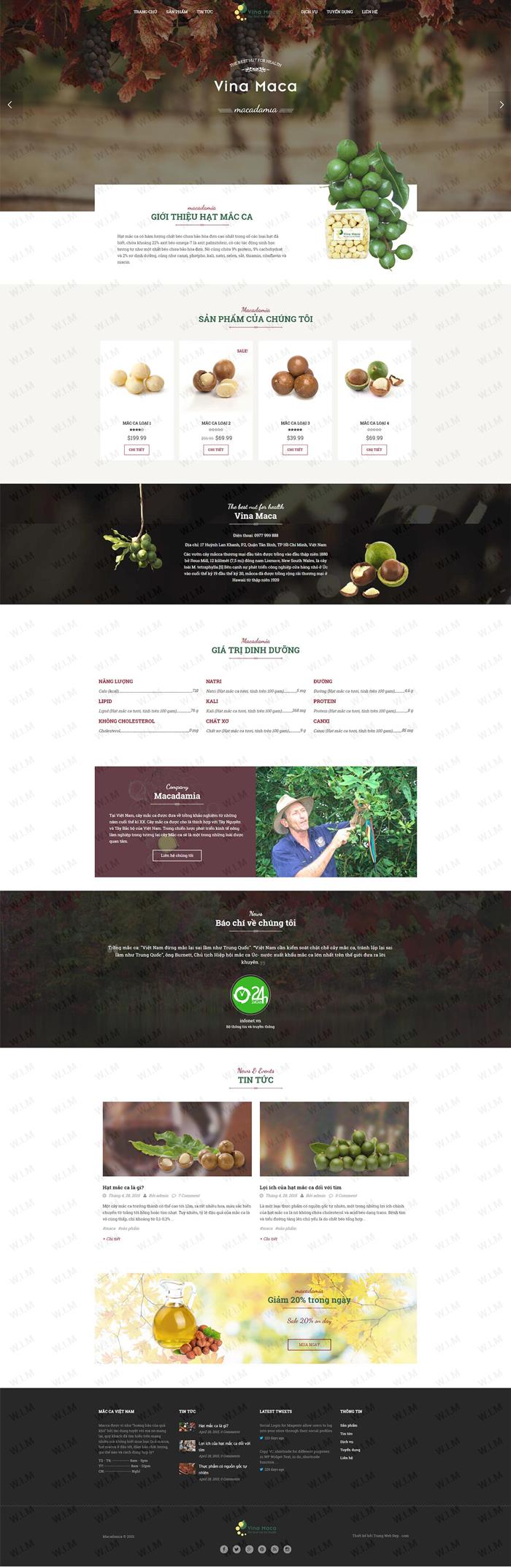 những website có giao diện đẹp nhất
