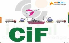 CIF là gì 01